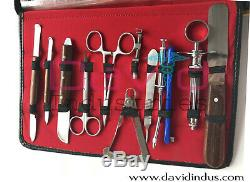 61 Pcs Dental Surgical Tools Extraction Surgery Forceps Kit